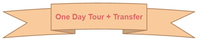one-day-tour-transfer-program